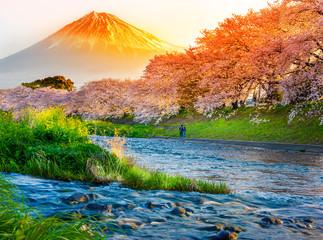 Mount Fuji with Sakura cherry blossom at the river in the morning, Shizuoka, Japan. Wall mural