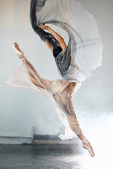 Perfect harmony fascinating our minds and eyes, ballet dancer in a jump. Ballerina is wearing in...