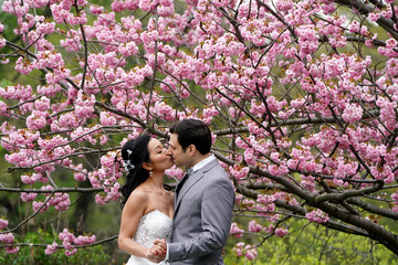 A bride and groom pose for photos under a cherry tree in full bloom in Central Park in New York