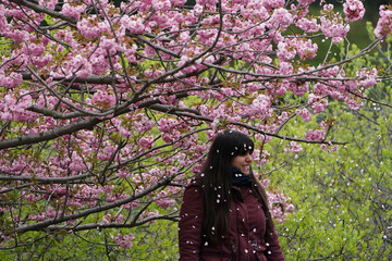 A woman poses for a photo after she shook a branch to make the blossoms fall under a Cherry tree in full bloom in Central Park in New York