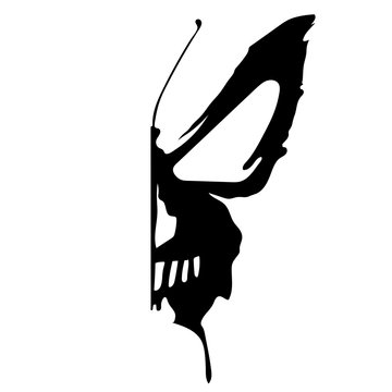 Abstract animal character, Vector drawing, creative design illustration digital painting brush on white background for decoration graphic design and artwork elemental, abstract half butterfly art.