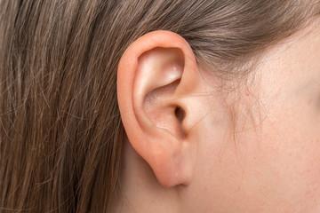 Fototapeta Close up of human head with female ear obraz