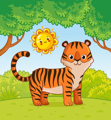 Tiger stands in the forest in the summer.