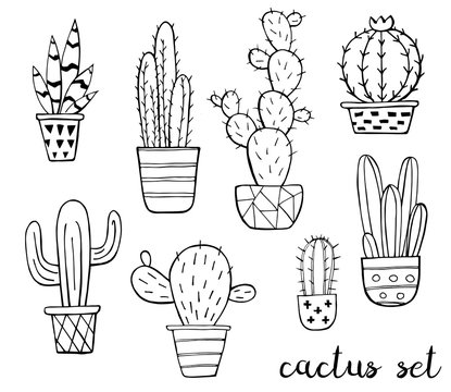 Vector set of cute black and white sketch cactus isolated on white background. Cactus family. Hand drawn ink illustration, line drawing, home decor. Vector illustration. Black outlines