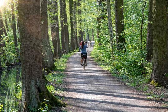 Radfahrerin auf dem Gurkenradweg im Spreewald bei Leipe