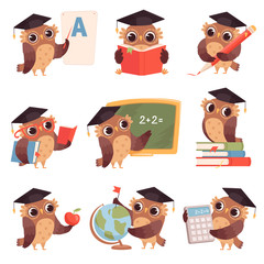 Owl school. Teacher birds characters teaching reading writing owls cartoon collection. Bird teacher owl, mascot of studying and teaching illustration