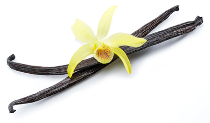 Fotobehang Kruiderij Dried vanilla pods and orchid vanilla flower on white background.
