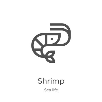 shrimp icon vector from sea life collection. Thin line shrimp outline icon vector illustration. Outline, thin line shrimp icon for website design and mobile, app development.