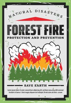Forest trees firefighting, nature protection