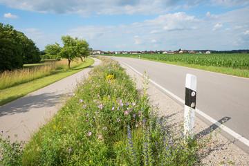 Landstraße und Radweg, Grünstreifen mit Wildblumen