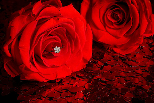 engagement ring with rose couple and hearts