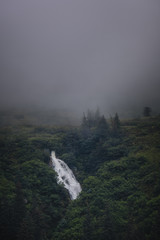 Waterfall in the Misty Forest