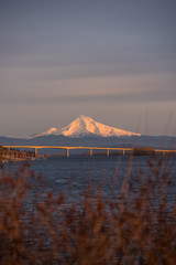 Mt Hood glowing in the last light of the evening over the Columbia River in Vancouver Washington