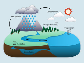 Diagram of Water Cycle in nature