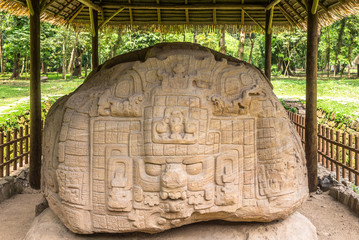 View at the Zoomorph P in ancient Maya archaeological site in Quirigua - Guatemala