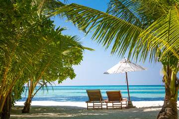 Travel background, lounge chairs and palm trees.