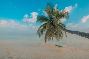 Rope swing swings on the palm. Tropical beach. Holiday vacation concept