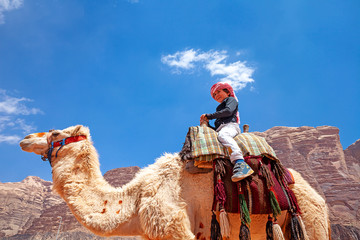 Bimbo sul cammello nel Wadi Rum, Giordania