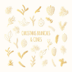 Big set of hand drawn golden pine, spruce, fir tree branches and cones. Gold winter plants, mistletoe and holly for Christmas decoration. Vector isolated holiday design elements.