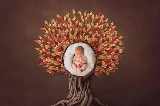 Autumn floral newborn portrait in basket round form. Photo- manipulations in warm colors