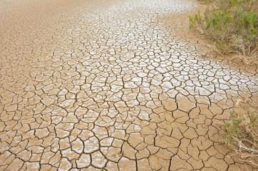 Mud Cracks in Salt Mediterranean Marsh