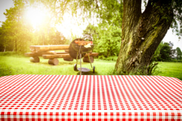 Wall Mural - Desk of free space and summer time in garden with grill.