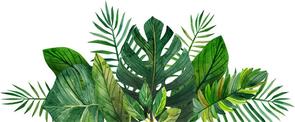 watercolor frame of tropical leaves Wall mural