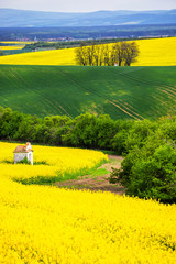Self adhesive Wall Murals Yellow Scenic view of beautiful Moravian Tuscany landscape in South Moravia, Czech Republic.