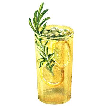 Glass of refreshing cocktail, fresh lemon drink with lemon, rosemary, gin tonic, lemonade, beverage, isolated, hand drawn watercolor illustration on white background