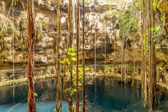 Cenote at San Lorenzo Oxman. Valladolid Cenotes. Yucatan Peninsula. Mexico
