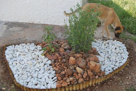 Broken White Marble, Garden Rockery Construction