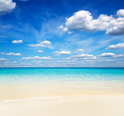 beach and tropical sea . nature background