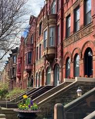 Park Slope, Brooklyn, New York City, USA.