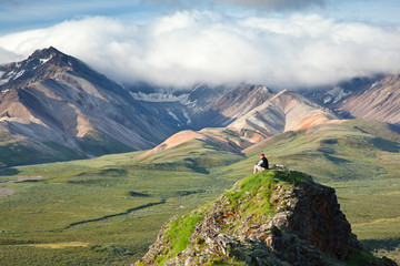 Senior Man Sits On A Rock Outcrop At Polychrome Pass With Alaska Range In The Background, Denali National Park & Preserve, Interior Alaska, Summer