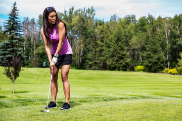 A female golfer lines up her putt her ball on the green on a warm summer day at a golf course; Edmonton, Alberta, Canada