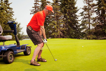 A physically disabled golfer using a specialized wheelchair hits the golf ball with his putter and the ball rolls towards the hole; Edmonton, Alberta, Canada
