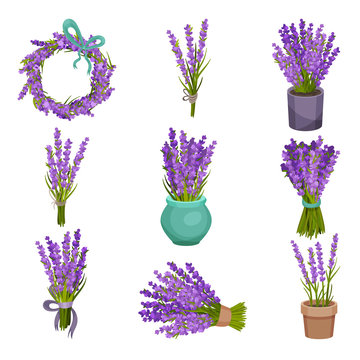 Set of different bouquets of flowers. Vector illustration