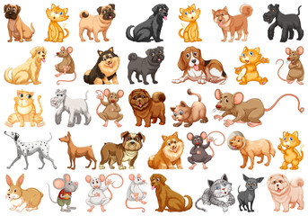 Set of pet character