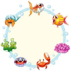 Sea creature frame template