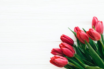 Beautiful red tulips on white wooden background in light. Happy Mothers day. Pink tulips border on...