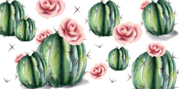 Cactus and flowers pattern Vector watercolor. Succulent summer backgrounds