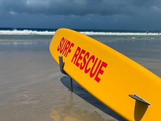 Plante de surfe des services de secours