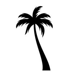 Coconut palm tree vector icon
