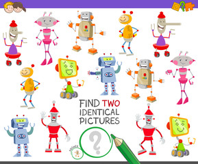 find two identical robots task for children