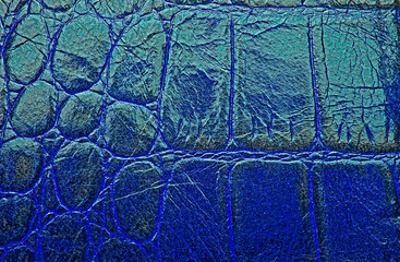 Wall Mural - Blue crocodile skin texture background