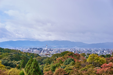 Beautiful landscape scenic of Kyoto city.