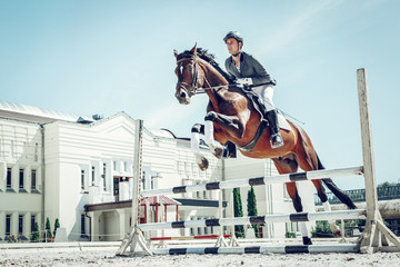 Beautiful graceful horse jumping over the barrier Wall mural