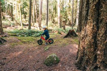 Toddler boy biking in the forest