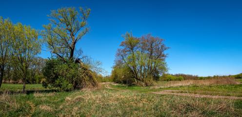 Frühling in der Wiesenlandschaft des Erpetals in Berlin-Friedrichshagen - Panorama aus 5 Einzelbildern
