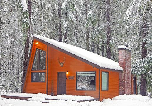 Modern wood cabin in snowy forest